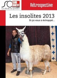 Baixar Insolites de l'annee 2013, les pdf, epub, eBook