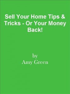 Baixar Sell your home tips & tricks – or your money pdf, epub, eBook