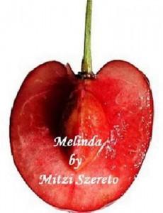 Baixar Melinda (a short story) pdf, epub, eBook