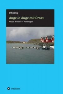 Baixar Auge in auge mit orcas pdf, epub, ebook