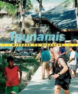 Baixar Witness to Disaster: Tsunamis pdf, epub, ebook