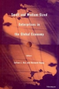 Baixar Small and Medium-Sized Enterprises in the Global Economy pdf, epub, eBook