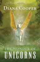 Baixar The Wonder of Unicorns pdf, epub, eBook