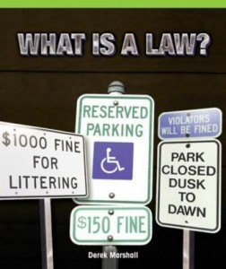 Baixar What Is a Law? pdf, epub, eBook
