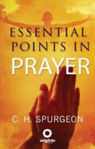 Baixar Essential Points in Prayer pdf, epub, eBook