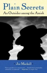 Baixar Plain Secrets: An Outsider among the Amish pdf, epub, ebook