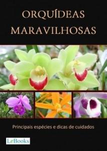 Baixar Orquídeas maravilhosas pdf, epub, ebook