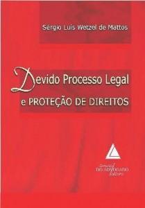 Baixar DEVIDO PROCESSO LEGAL E PROTEÇÃO DE DIREITOS pdf, epub, eBook