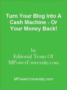 Baixar Turn your blog into a cash machine – or your pdf, epub, eBook