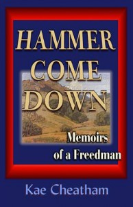 Baixar Hammer come down pdf, epub, eBook