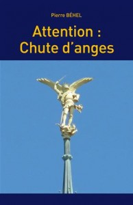 Baixar Attention : chute d'anges pdf, epub, eBook