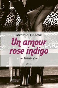 Baixar Amour rose indigo tome 2, un pdf, epub, eBook