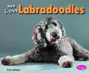 Baixar Youll love labradoodles pdf, epub, eBook