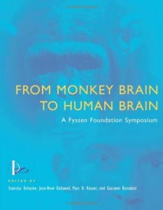 Baixar From monkey brain to human brain pdf, epub, eBook