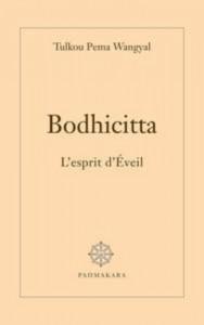 Baixar Bodhicitta pdf, epub, eBook