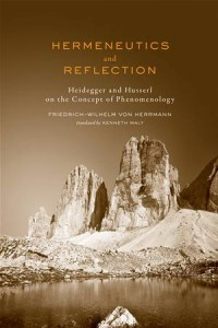 Baixar Hermeneutics and reflection pdf, epub, ebook