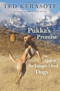 Baixar Pukkas promise pdf, epub, eBook