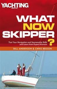 Baixar What now skipper? pdf, epub, ebook