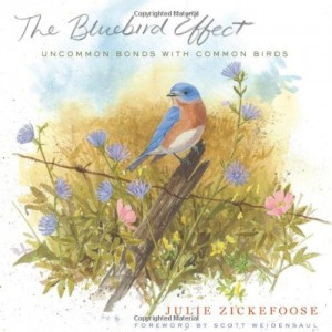 Baixar Bluebird effect, the pdf, epub, eBook