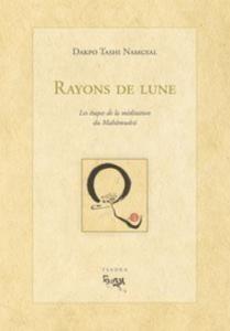 Baixar Rayon de lune pdf, epub, eBook