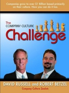 Baixar The Company Culture Challenge pdf, epub, eBook