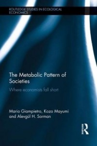 Baixar The Metabolic Pattern of Societies: Where Economists Fall Short pdf, epub, eBook