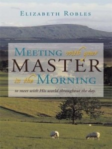 Baixar Meeting with Your Master in the Morning: To Meet with His World Throughout the Day. pdf, epub, ebook
