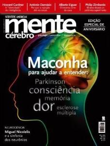 Baixar Revista Mente e Cérebro 224 pdf, epub, ebook