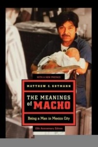 Baixar The Meanings of Macho: Being a Man in Mexico City pdf, epub, eBook