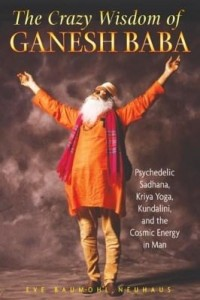 Baixar The Crazy Wisdom of Ganesh Baba: Psychedelic Sadhana, Kriya Yoga, Kundalini, and the Cosmic Energy i pdf, epub, ebook