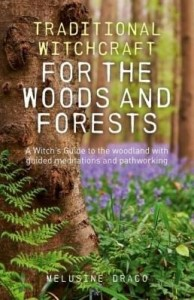 Baixar Traditional Witchcraft for the Woods and Forests: A Witch's Guide to the Woodland with Guided Medita pdf, epub, eBook