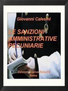 Baixar Sanzioni amministrative pecuniarie, le pdf, epub, eBook