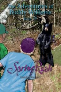 Baixar Springrush pdf, epub, eBook