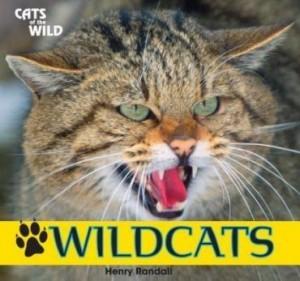 Baixar Wildcats pdf, epub, eBook