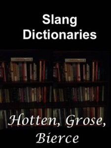 Baixar Slang dictionaries pdf, epub, eBook
