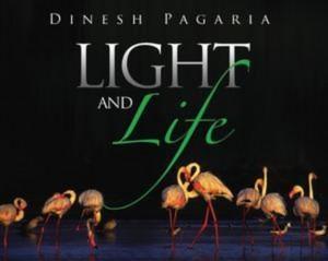 Baixar Light and life pdf, epub, ebook