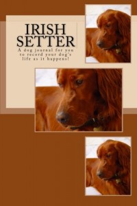 Baixar Irish setter pdf, epub, eBook