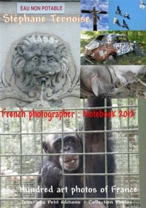 Baixar French photographer: notebook 2012 pdf, epub, eBook