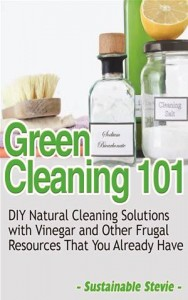 Baixar Green cleaning 101 pdf, epub, eBook