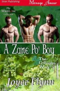 Baixar Zane po' boy, a pdf, epub, eBook