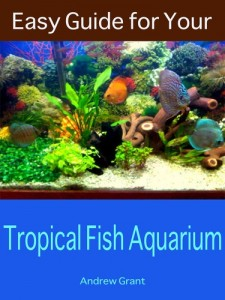 Baixar Easy guide for your tropical fish aquarium pdf, epub, eBook