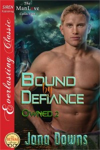 Baixar Bound by defiance pdf, epub, eBook