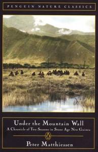 Baixar Under the mountain wall pdf, epub, ebook
