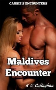Baixar Maldives encounter pdf, epub, eBook