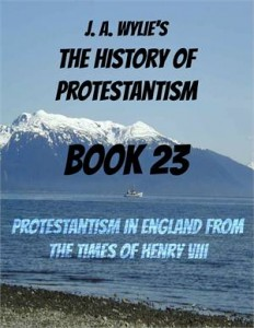 Baixar Protestantism in england from the times of henry pdf, epub, ebook