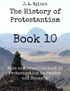 Baixar Rise and establishment of protestantism in pdf, epub, ebook