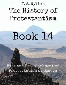 Baixar Rise and establishment of protestantism at pdf, epub, ebook