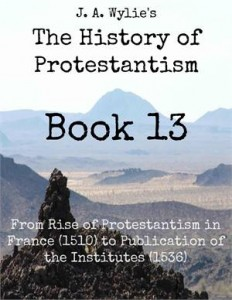 Baixar From rise of protestantism in france (1510) to pdf, epub, ebook