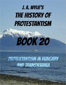 Baixar Protestantism in hungary and transylvania: book pdf, epub, ebook