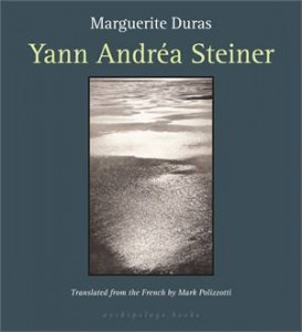 Baixar Yann andrea steiner pdf, epub, eBook